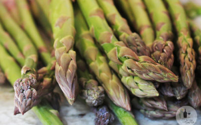 ASPARAGUS GROWING WORKSHOP AT BABYLONSTOREN, WESTERN CAPE
