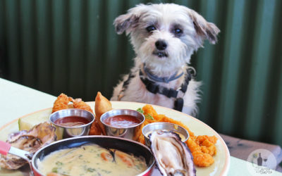 PET-FRIENDLY RESTAURANTS ON THE WEST COAST