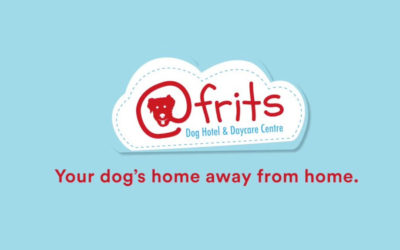 EXERCISE YOUR DOG AT @FRITS PET HOTEL DURING LOCKDOWN